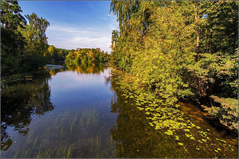 москва, сентябрь, серебренный бор, озеро Вот и Осень пришлаphoto preview