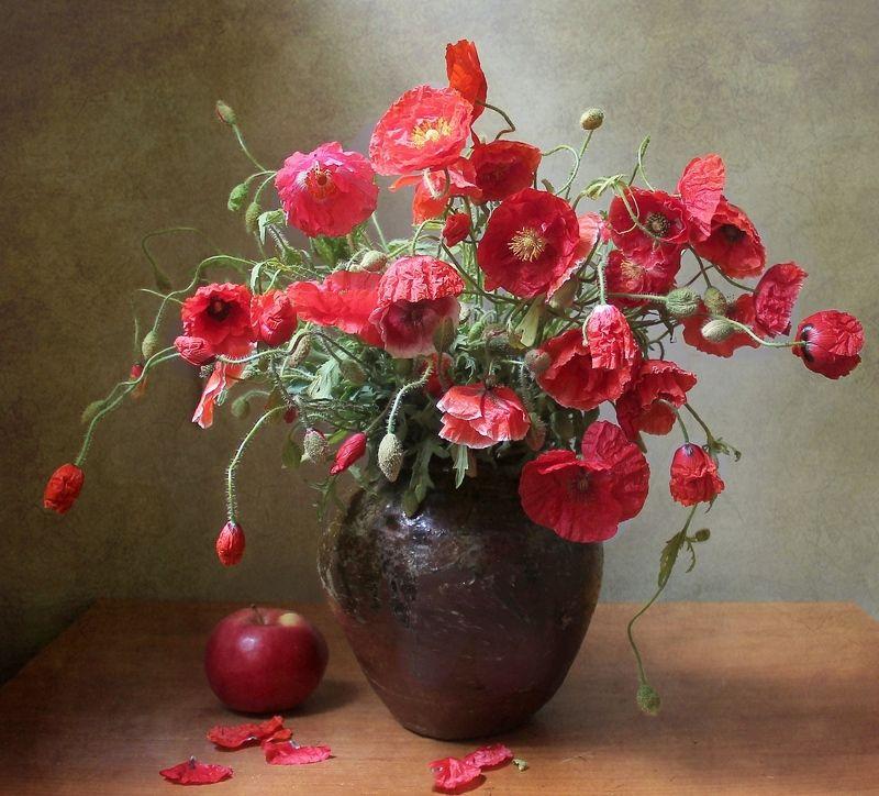лето,  цветы, маки, натюрморт, марина филатова ***photo preview