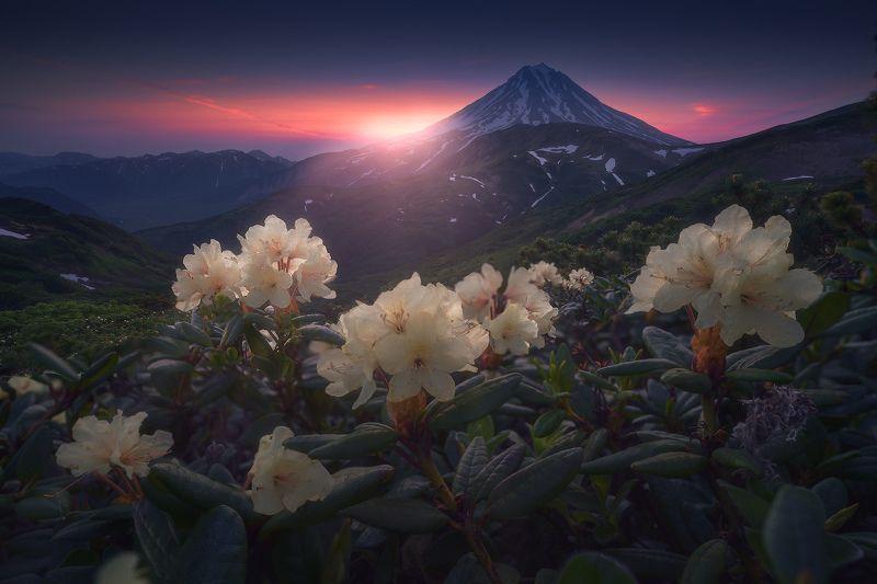 камчатка Рассвет на Вилючинскомphoto preview