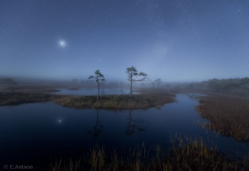пейзаж, природа, ночь, болото, эстония Ночное настроениеphoto preview