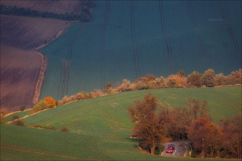 южная моравия,пейзаж,карлинские волны,линии,south moravian,lines,свет,czech,осень,чехия,landscapes,поле \