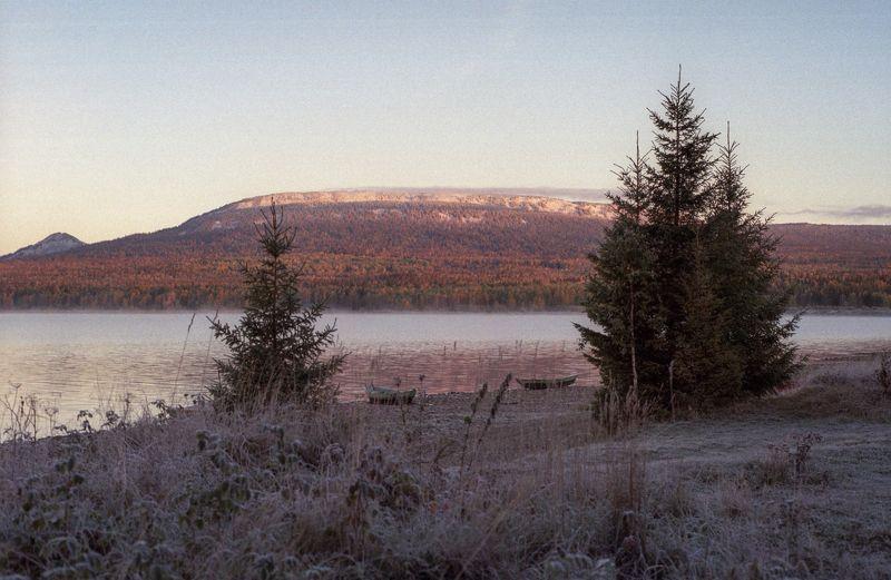 Морозное утро. photo preview