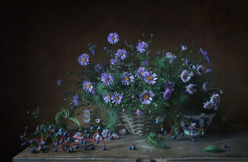 натюрморт, цветы, сентябрь, сентябрины, девичий виноград Сентябрьphoto preview