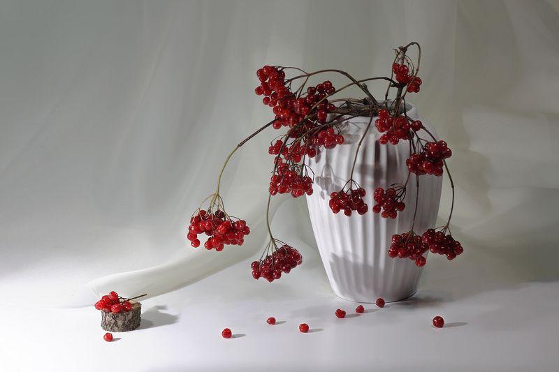 калина, ваза Калина вызрела...photo preview