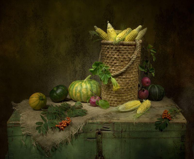 натюрморт, кукуруза, тыквы, яблоки В кладовочке...photo preview