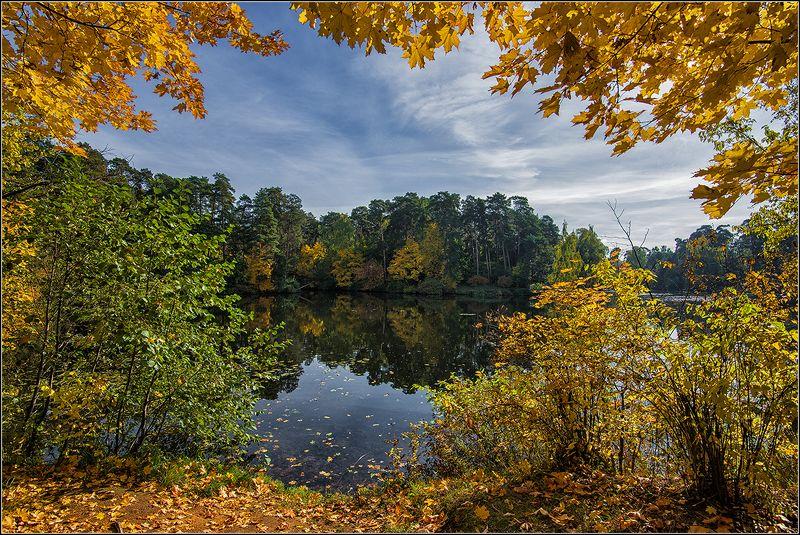 москва, осень, озеро, деревья, листья, отражение Осень золотаяphoto preview