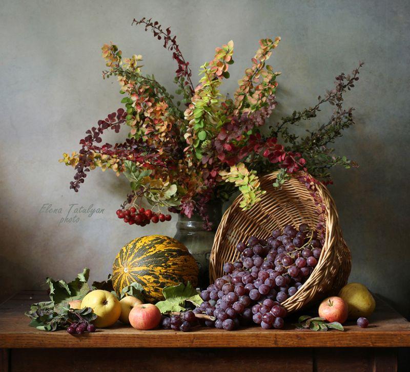 фрукты, осень, дыня Красивая осеньphoto preview