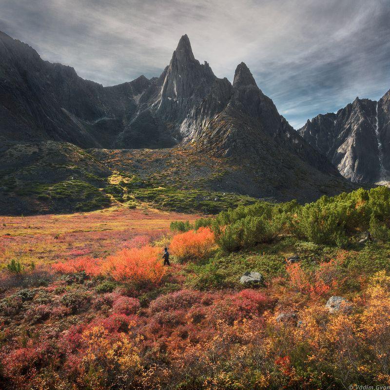 озероджекалондона, челленджер, магадан, колыма Осенний Челленджерphoto preview