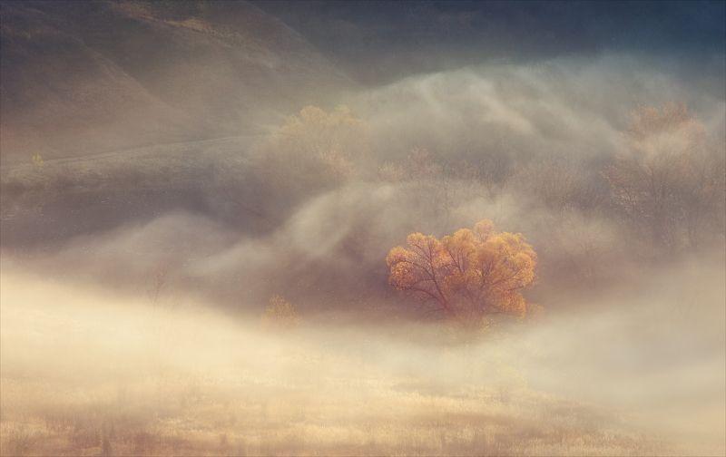 Осенние сны.photo preview