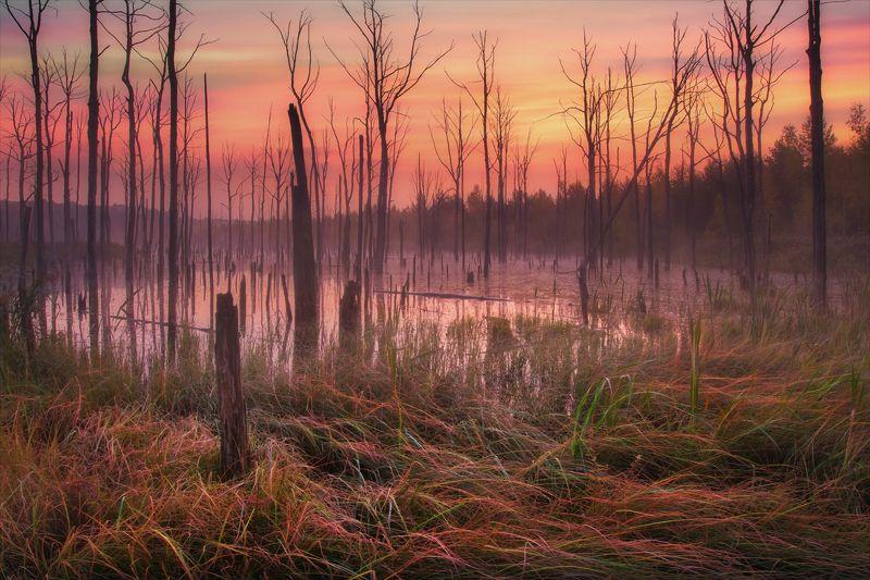 Ведьмино озеро.photo preview