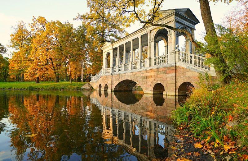 morning, bridge, pond, park, reflection Autumn morningphoto preview