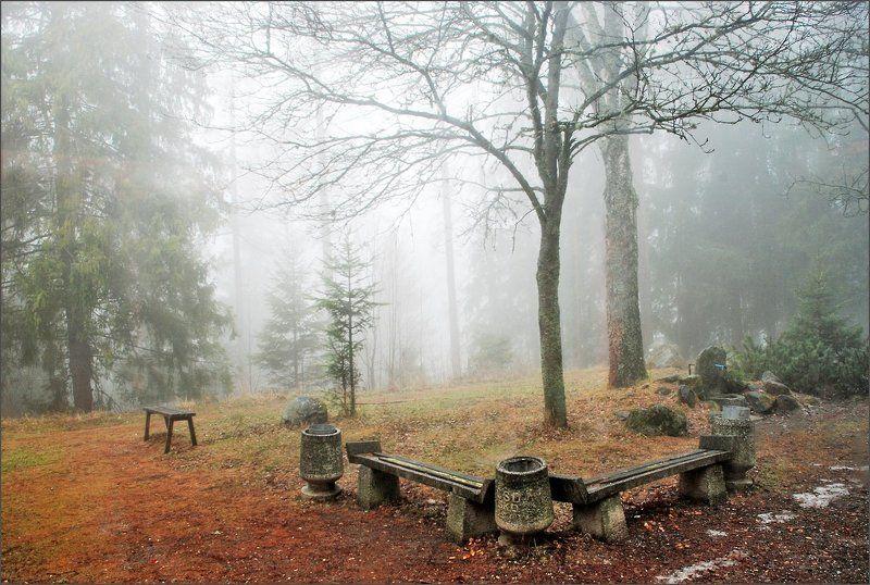 Туманная серия 2(3)photo preview