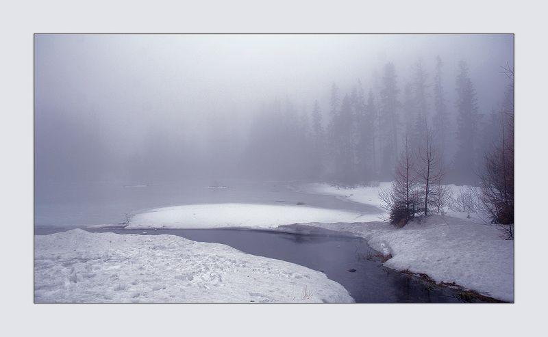Туманная серия 2(4)photo preview
