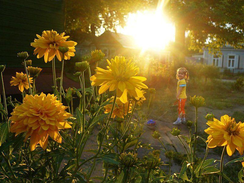 солнечное детствоphoto preview