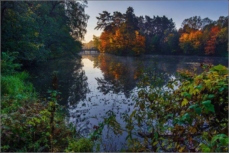 москва, серебренный бор, утро, туман, отражение Краски Осениphoto preview