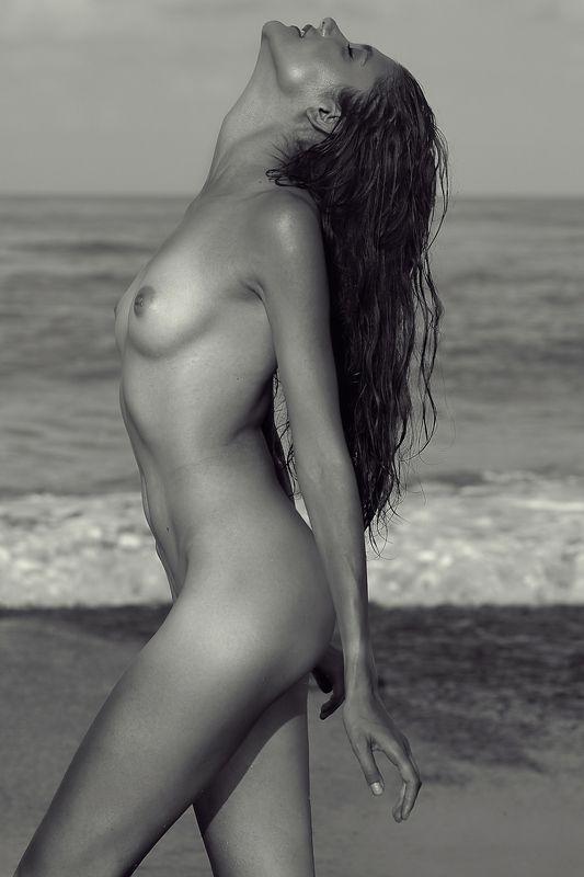девушка, грудь, тело, модель, ню, голая, пляж, океан, nude, обнаженная photo preview