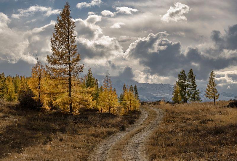 алтай, курайская степь., непогода., Дорога в осень.photo preview