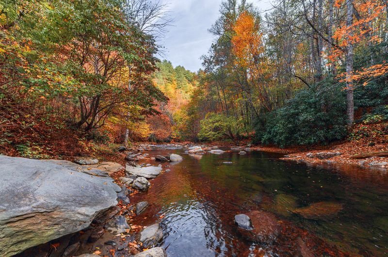 Осенние зарисовки в горах Аппалачиphoto preview