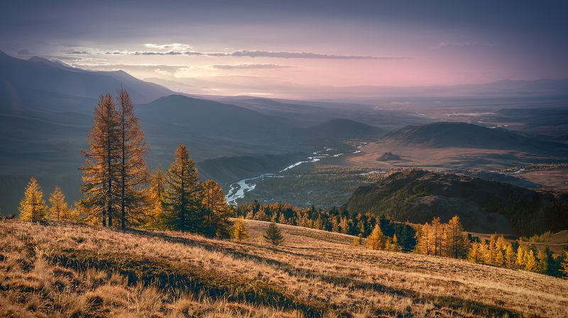 пейзаж, природа, осень, рассвет, утро, алтай, горы, степь, восход, чуя, река, сибирь, желтый, розовый, панорама Чуйская степь в осенних краскахphoto preview