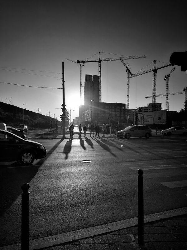 Morning lightsphoto preview