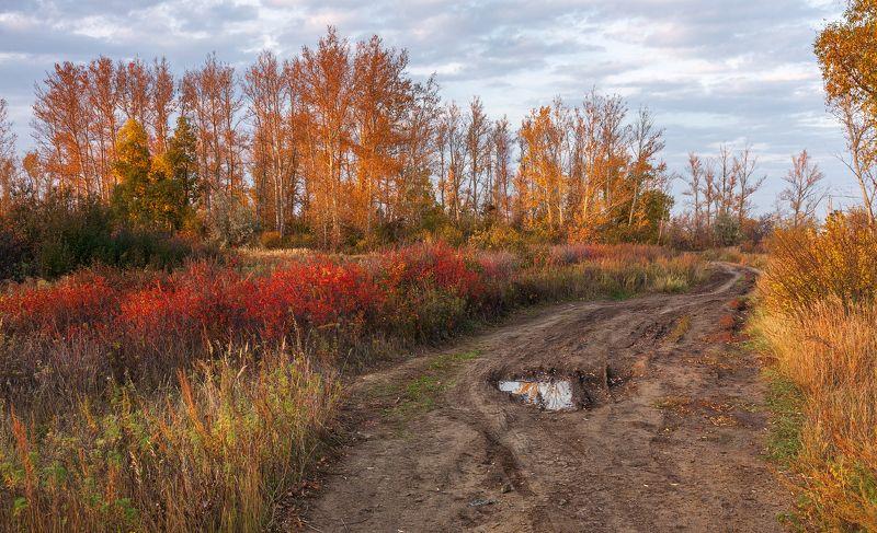 Осень в расцветеphoto preview