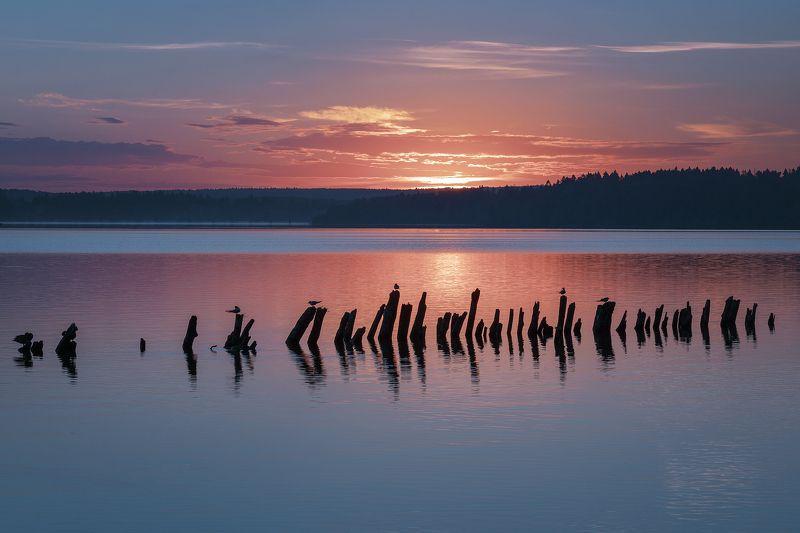 Московская область Восход на  озере Сенежphoto preview