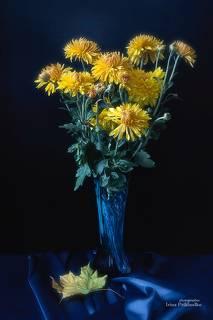 С желтыми хризантемами