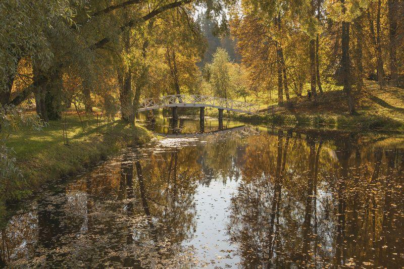 Осень в Михайловскомphoto preview