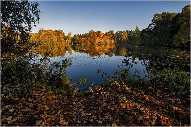 москва Осеннее утро на озереphoto preview