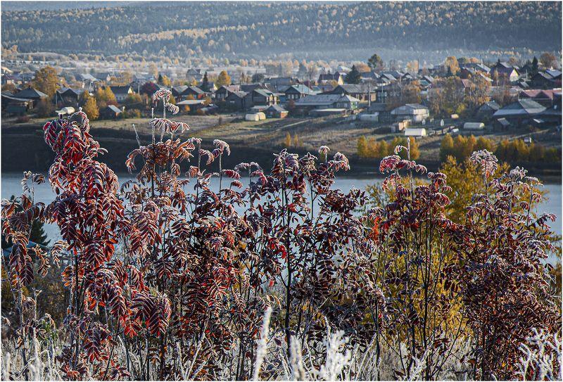 Осенние заморозки.photo preview