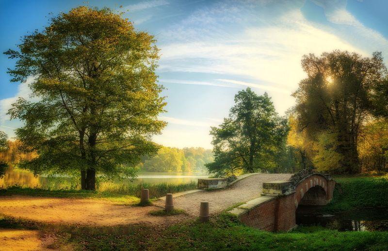 Осень в старом паркеphoto preview
