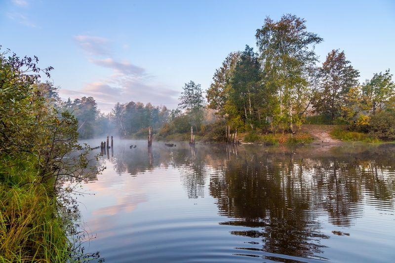 осень, вода, туман, река, пейзаж Осень у тихой рекиphoto preview