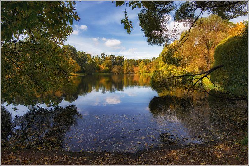 москва, озеро Осень в городеphoto preview