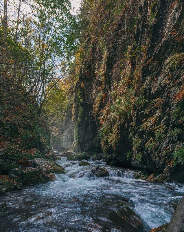 горы, ущелье, река, природа, осень, кавказ, пейзжаж, ***photo preview