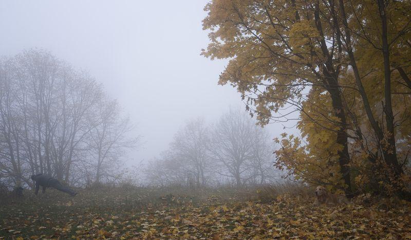 октябрь утро спорт собака Под надзором.photo preview