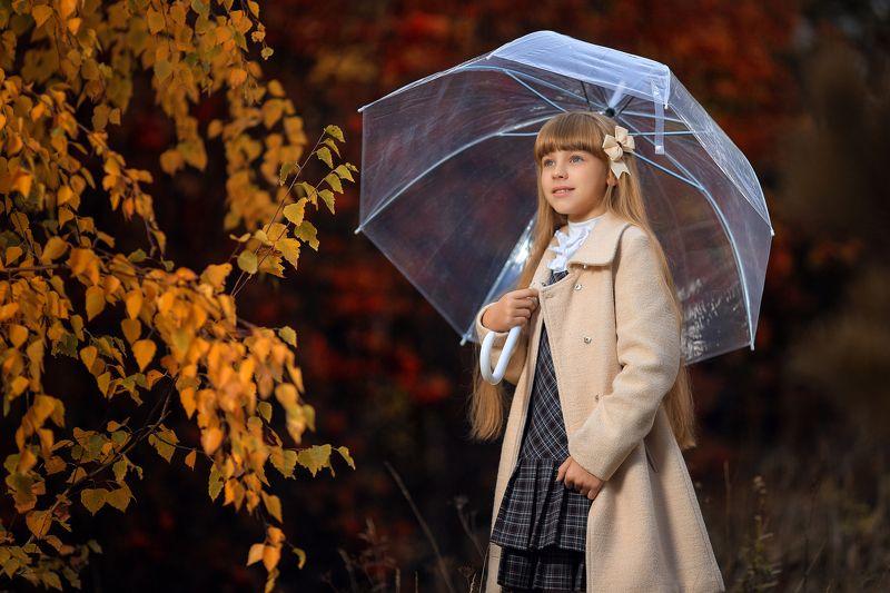 осень, красный, жёлтый, листья, открытый воздух, зонтик, девочка, молодая, солнечный, рыжий, блики Цвета осениphoto preview
