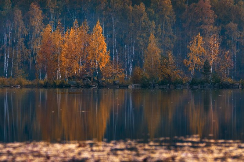 осень,пейзаж,озеро,подмосковье,закат Осенний пейзажphoto preview