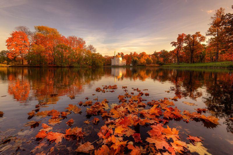 моменты золотой осени...photo preview