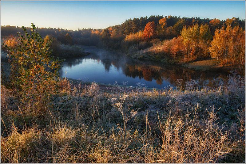 москва, мещерский парк, утро, пруд, туман, отражение, изморозь *  *photo preview