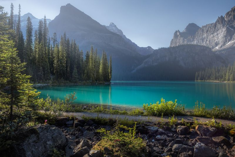 canada, rockies, ohara, bugs, light water, turquoise МОШКАphoto preview
