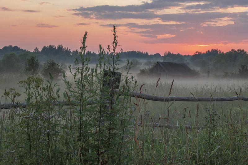 Тверская область Теппый летний вечерphoto preview