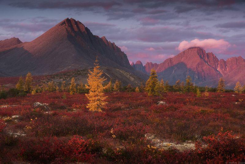 озероджекалондона, магадан, колыма Рассвет у пика Баранийphoto preview