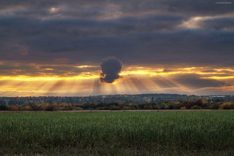 небо, закат, осень, поле. Осеннее небоphoto preview