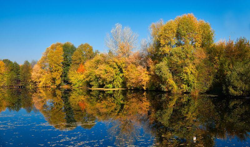Осенью 4photo preview