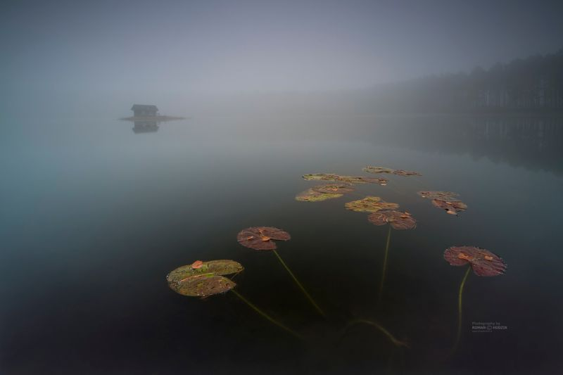 Foggy world, fog, sunrise, lake, landscape, forest, water, sky, manufactories, Foggy world.photo preview