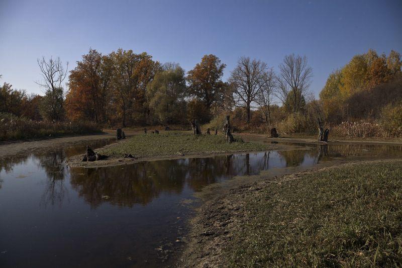 золотая осень краски осениphoto preview