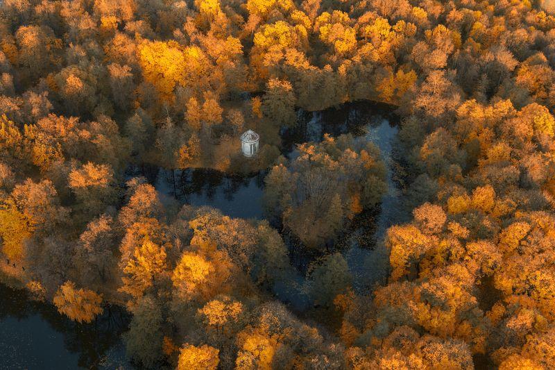 осень,пейзаж,усадьба,пруды,ратонда,закат Осень в Усадьбеphoto preview