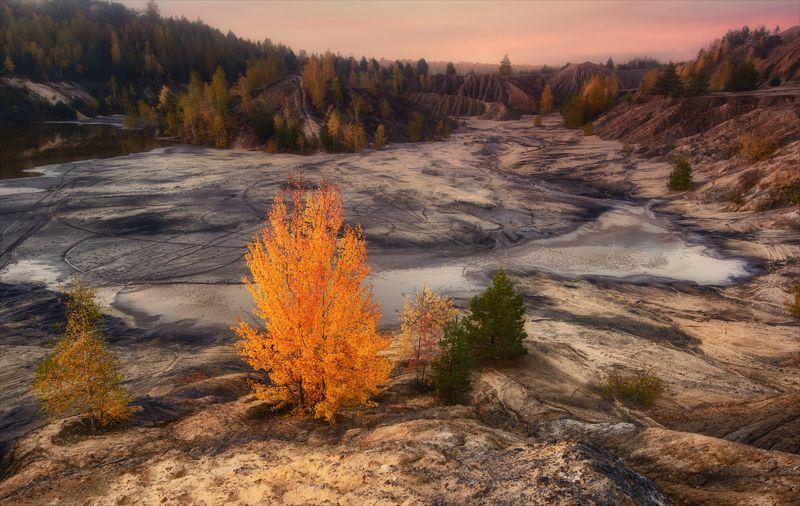 Осень-королева бала.photo preview