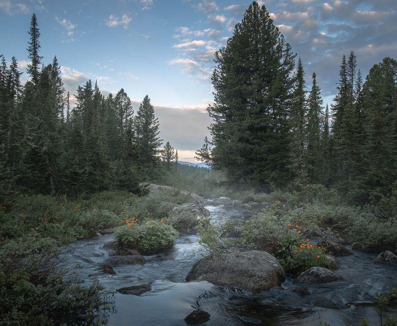 На озере Светлое. Ергакиphoto preview