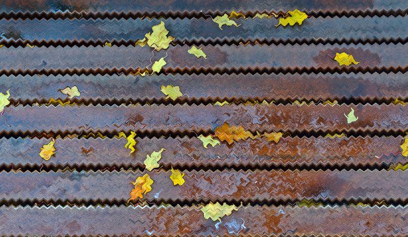 Осенняя абстракцияphoto preview